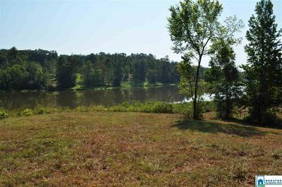 0 NORTH LAKE DR # 10 ACRES, VALLEY GRANDE, AL 36701 - Photo 1