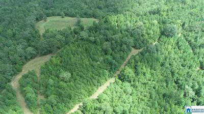 60 ACRES CO RD 99 # 60 ACRES, WEDOWEE, AL 36278 - Photo 2