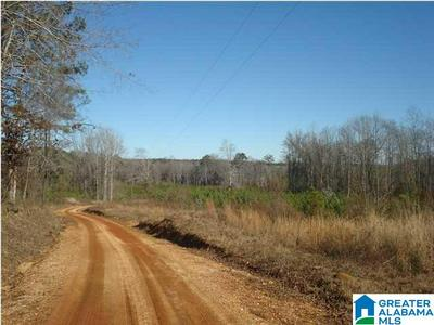 000 KINARD RD # METES AND BOUNDS, BRENT, AL 35034 - Photo 1