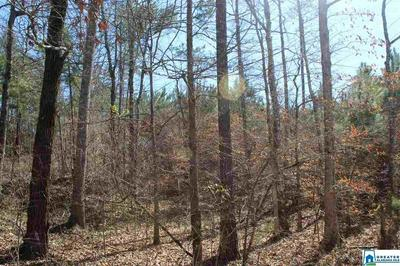 0 REED CREEK DR 0, SHELBY, AL 35143 - Photo 2