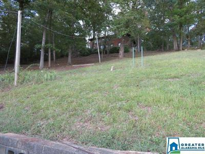 570 RIVER HILL DR, ADGER, AL 35006 - Photo 2