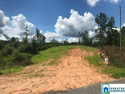 551 SARDIS RD 19.1 ACRES, Cragford, AL 36255 - Photo 2