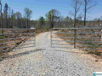 0 HWY 63, Goodwater, AL 35072 - Photo 1