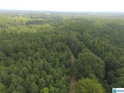 49795 HWY.49 CRAGFORD RD 105 ACRES, Cragford, AL 36255 - Photo 2