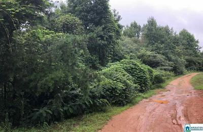 217 VERDA GREEN LN 4 LOTS / PARCELS OF LAND, Columbiana, AL 35051 - Photo 1