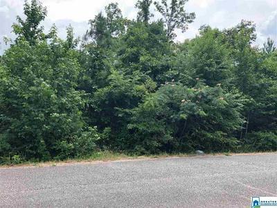 4300 LEVINE AVE # 8.4ACRES, GRAYSVILLE, AL 35073 - Photo 1