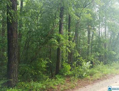 0 CO RD 642 # 0, MUSCADINE, AL 36269 - Photo 1