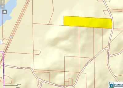 16091 JACKSON TRACE RD # 0, LINCOLN, AL 35096 - Photo 2