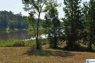 0 NORTH LAKE DR # 10 ACRES, VALLEY GRANDE, AL 36701 - Photo 2
