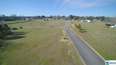 101 ROLLING CIR 13, VINCENT, AL 35178 - Photo 1
