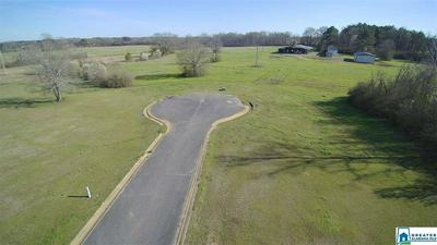 113 GENTLE MEADOW DR 17, VINCENT, AL 35178 - Photo 2