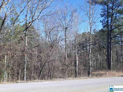 4765 POSSUM TROT RD 10.06, Piedmont, AL 36272 - Photo 1