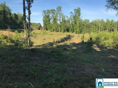 CO RD, THORSBY, AL 35171 - Photo 2