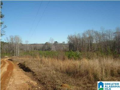 000 KINARD RD # METES AND BOUNDS, BRENT, AL 35034 - Photo 2