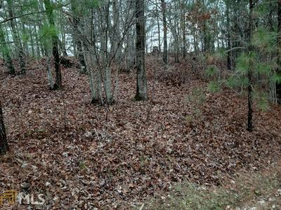 107/108 HARRIS CREEK ROAD # LOT 107/108, Ellijay, GA 30540 - Photo 1