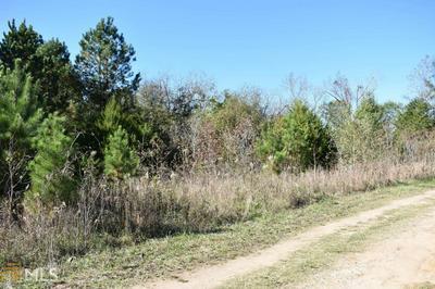 0 WILLOW ST, Maxeys, GA 30667 - Photo 2