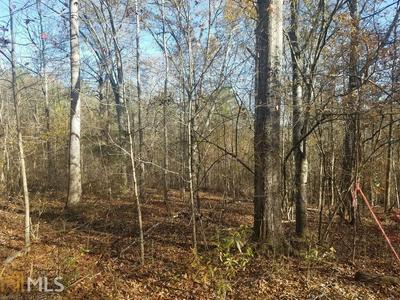 0 SPEARMAN RD, Roopville, GA 30170 - Photo 2