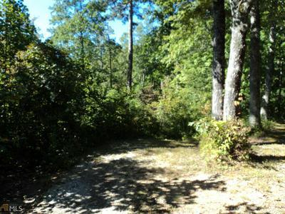 0 GLENKAREN # B-12, Dillard, GA 30537 - Photo 1