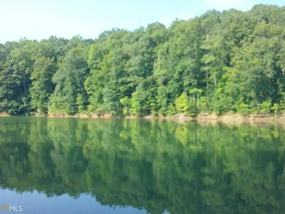 0 DOBBS LAKE RD # LOT 6, Hartwell, GA 30643 - Photo 2