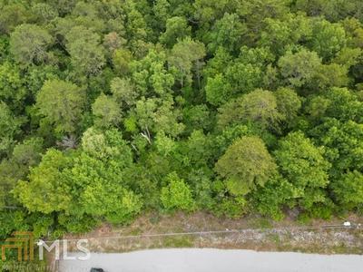 0 BROWN HAWK LOT, Clayton, GA 30525 - Photo 2