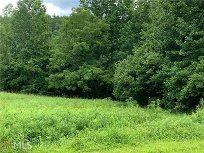 0 CHESTATEE DR LOT 83, CLEVELAND, GA 30528 - Photo 1