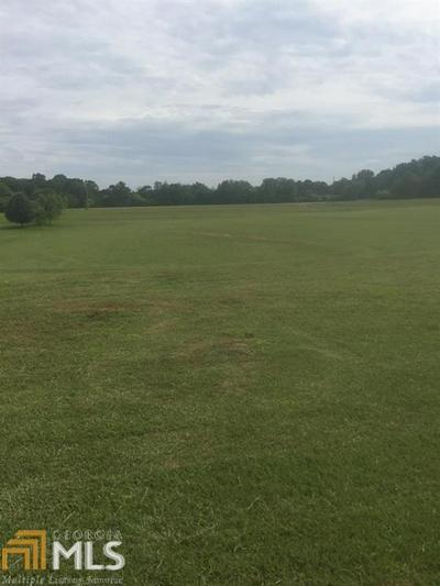 250 BLACKWELDER RD, Roopville, GA 30170 - Photo 2