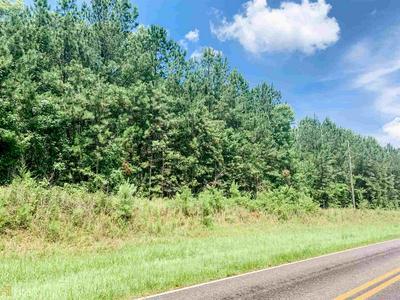 0 GOOLSBY RD, Monticello, GA 31064 - Photo 2