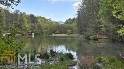 62 CHERRY LAKE CT, Cherry Log, GA 30522 - Photo 1