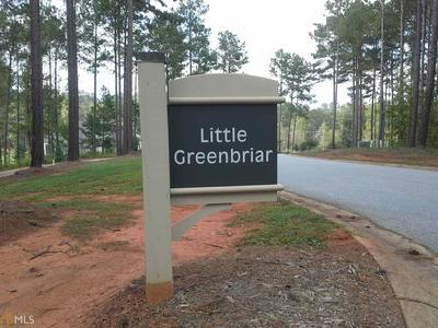 1031 LITTLE GREENBRIAR CRK # 86, Greensboro, GA 30642 - Photo 2