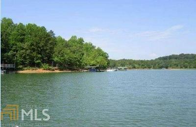 0 DOBBS LNDG, Hartwell, GA 30643 - Photo 1