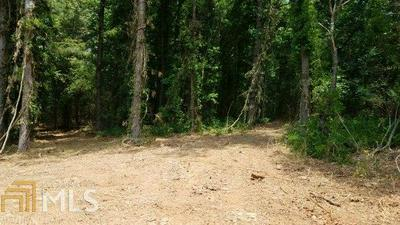 0 BEACON LIGHT RD, Hartwell, GA 30643 - Photo 1
