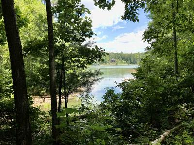 0 WHITE DOVE LN # 1, Blairsville, GA 30512 - Photo 2