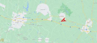 0 NEWBORN RD, Rutledge, GA 30663 - Photo 2