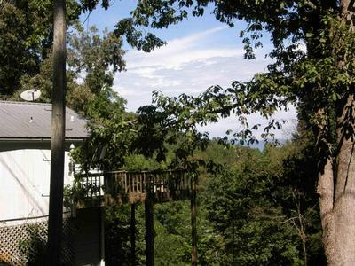 1063 SKY HAWK MOUNTAIN RD, Hiawassee, GA 30546 - Photo 2