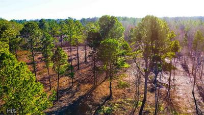 0 HIGHWAY 5 W (TRACT 1) TRACT 1, ROOPVILLE, GA 30170 - Photo 2