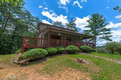 780 MOONSHINE MOUNTAIN RD, Mineral Bluff, GA 30559 - Photo 1