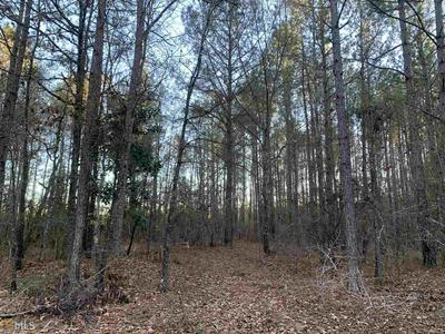 0 RODDY HWY, Eastman, GA 31023 - Photo 2