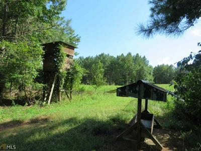0 DUKES WADDELL RD # 150 ACRES, Woodbury, GA 30293 - Photo 2
