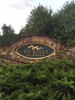 0 MOUNTAIN RIDGE DR # LOT 205, Rabun Gap, GA 30568 - Photo 1
