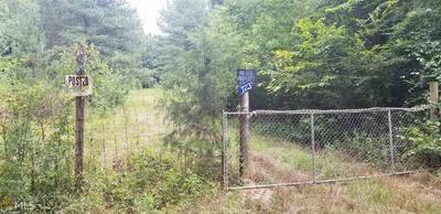 0 SHURLEY RD, Warrenton, GA 30828 - Photo 1