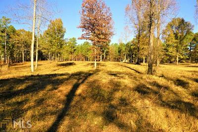 0 EAGLE VIEW DR, Monticello, GA 31064 - Photo 2