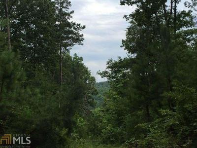 303 COVE LAKE DR # 0, Marble Hill, GA 30148 - Photo 2