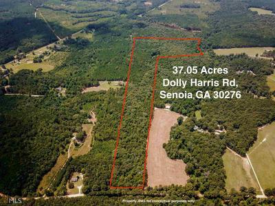 0 DOLLY HARRIS RD # 37 ACRES, Senoia, GA 30276 - Photo 1
