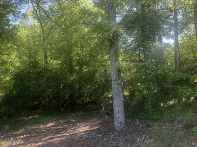 0 ROYSTON BYPASS, Royston, GA 30662 - Photo 2