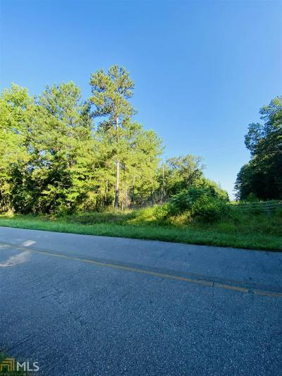 0 PAUL MADDOX ROAD, Jackson, GA 30233 - Photo 1