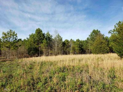 1150 NEEDMORE RD 37.26 ACRES, ROOPVILLE, GA 30170 - Photo 1