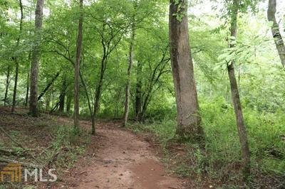 1717 HARBER RD, Carnesville, GA 30521 - Photo 2