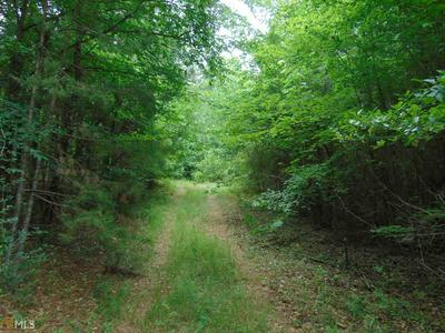 0 OLD RIVER RD # TRACT 22, Juliette, GA 31046 - Photo 2