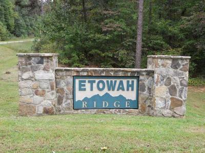 54B ETOWAH RDG, DAWSONVILLE, GA 30534 - Photo 1