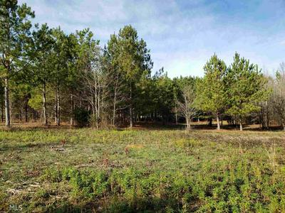 1150 NEEDMORE RD 37.26 ACRES, ROOPVILLE, GA 30170 - Photo 2